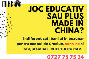 MindSpot Sibiu - Joc educativ sau plus made in China?